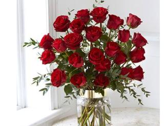 Blumen zu gewinnen