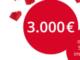 3000 EUR in bar mit Blume 2000