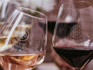 10 Bio-Wein Pakete zu gewinnen
